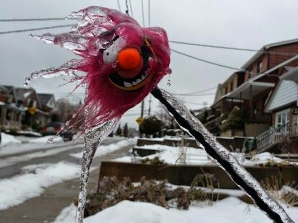 A frozen and icy stuffed animal. - The 30 Most Amazing Photos Of Frozen Things In Honor Of The Coldest Morning Of The 21st Century