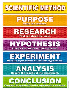 What Are the Steps of the Scientific Method