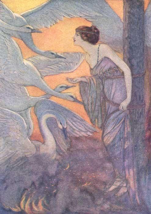 the wild swans