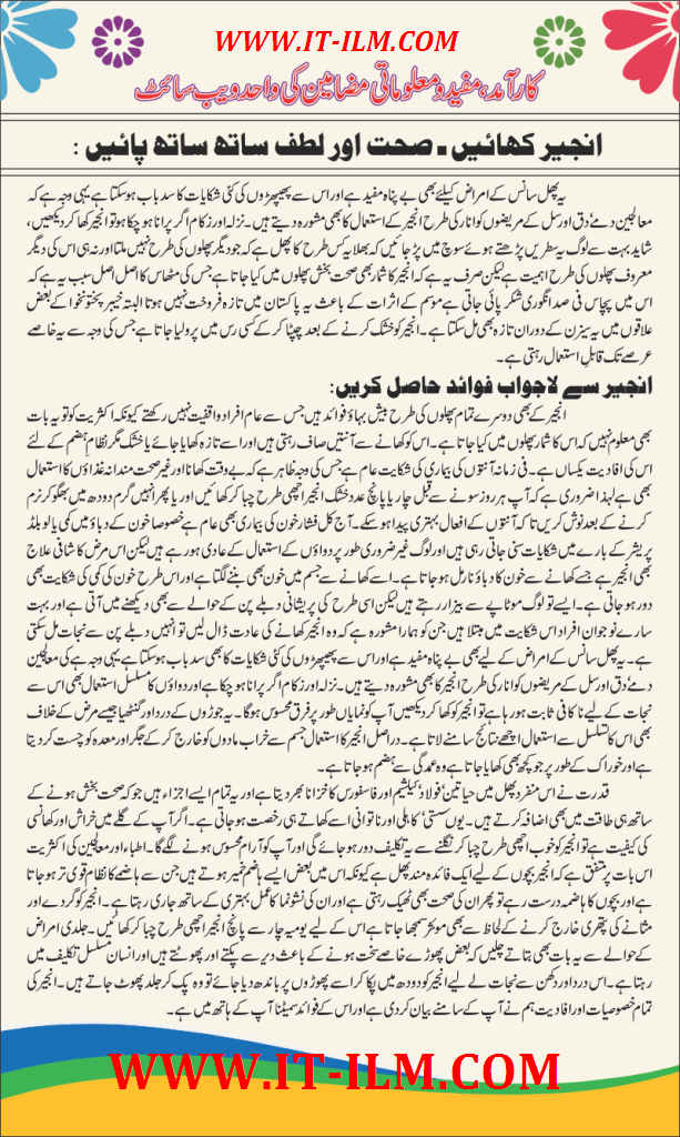 an essay on computer in urdu