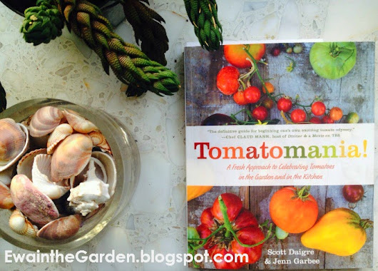 Ewa in the Garden: Book Review: Tomatomania! A Fresh Approach to Celebrating Tomatoes in the Garden and in the Kitchen