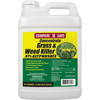 Ragan & Massey Inc Compare-N-Save Concentrate Grass and Weed Killer, 41-Percent Glyphosate