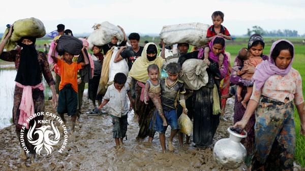 KNCI Peduli Rohingya