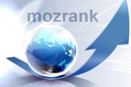 雖然 PageRank 停止更新,沒關係還有 MozRank