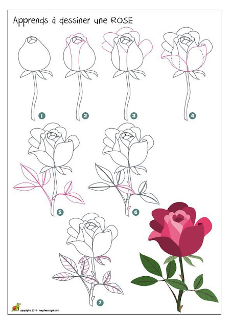 طريقة رسم وردة للمبتدئين