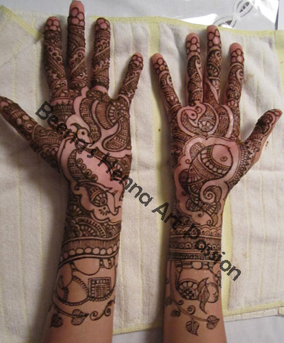 Henna Art Passion Bridal Animal Chakra And Various Other