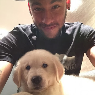 Neymar dogs
