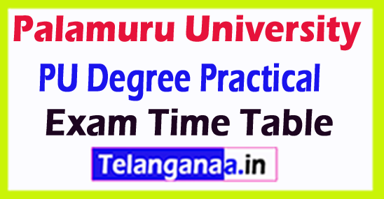 Palamuru University PU Degree Practical Exam Time Table
