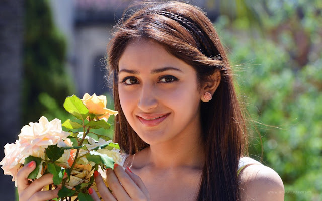 Sayesha Saigal - Shivaay