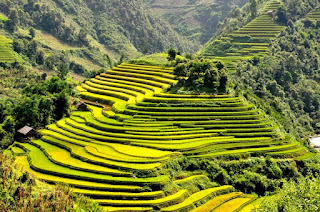 Explore The North of Vietnam For 5 days and 4 nights 3