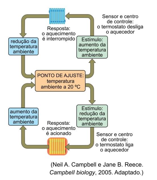 unesp-2018-2-1-fase-a-figura-mostra-como-um-sistema-de-aquecimento-domestico