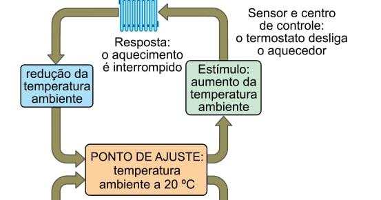 UNESP - 2018/2 - 1ª fase - A figura mostra como um sistema..