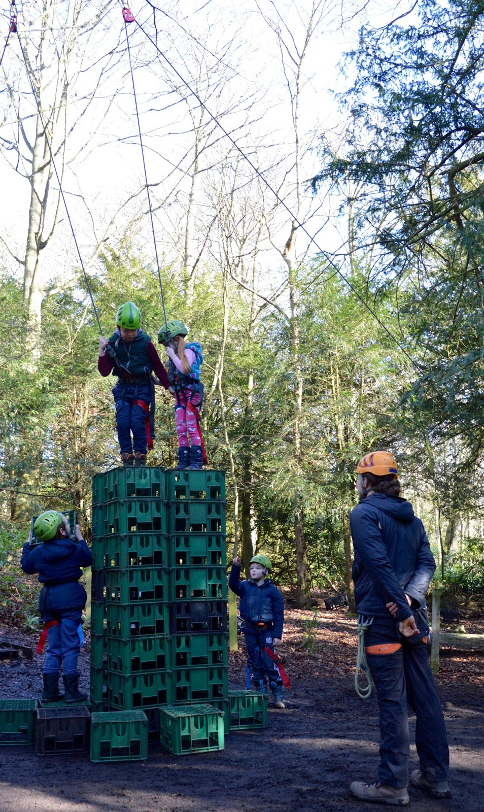 Beamish Wild | School Holiday Club & Activities in County Durham | North East England - crate stack in woods