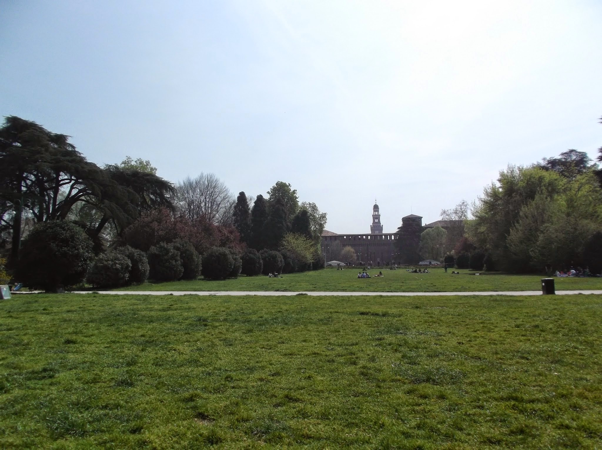 view across a park, blue sky