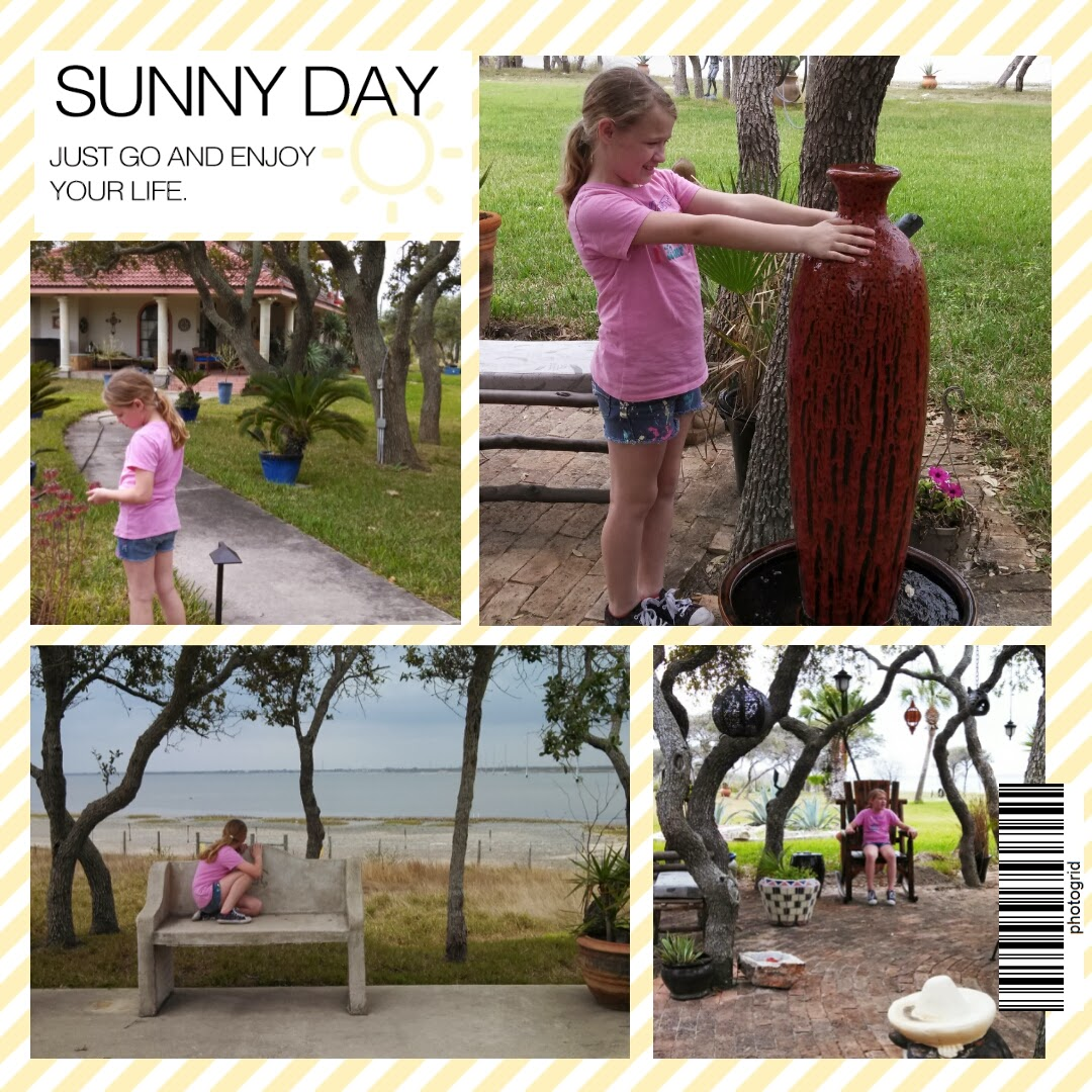 Sunny Day Photo Grid Collage