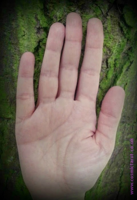palm of my hand