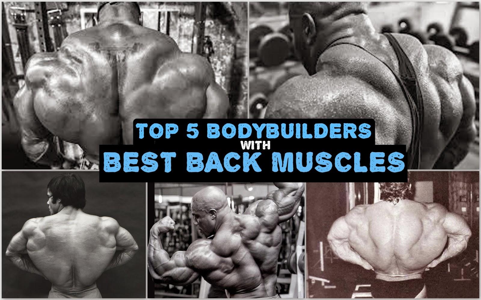 Top 5 Bodybuilders with best back muscles - AESTHETIC BODYBUILDING