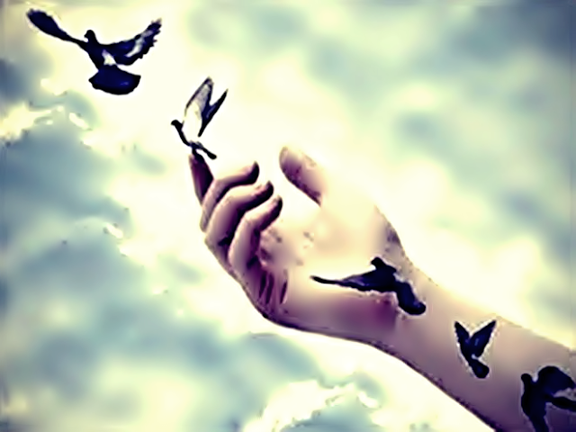 Platão, Poder Curador... o Amor, Sem amor nada tem valor, Mistérios do Universo, Energia da Vida, Magia da vida