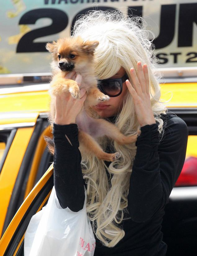 GOSSIP OVER THE WORLD: Amanda Bynes is showing clear signs