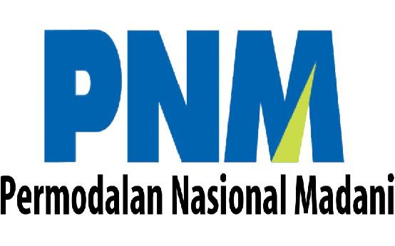 Lowongan Kerja BUMN PT Permodalan Nasional Madani (Persero) Tahun 2017