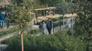 Kathryn Gustafson y el  Parque Central de Valencia