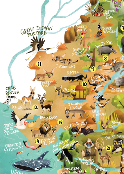 green humour wildlife map of india Green Humour The Wildlife Map Of India green humour wildlife map of india