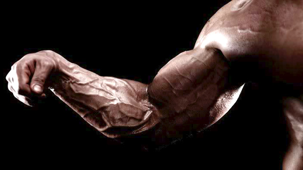 how does nandrolone work