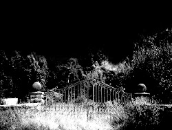 gothic dark background scary wallpapers lonely bloody michael flower halloween hd cemetery wallaper lady backgrounds gates horor paw relations darkness