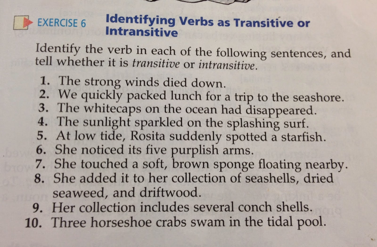 Transitive And Intransitive Verbs Worksheets Grade 8