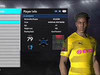 Option File PES 2017 untuk PTE Patch 6.1 dari Fast Eagle