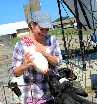 Baby calves are kept at a separate farm at Andreas Dairy to protect them from disease and illnesses.