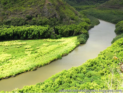 Beautiful river with greenery around, Most Beautiful Wallpaper