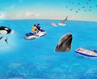 Killer Orca Whale Simulator 3D