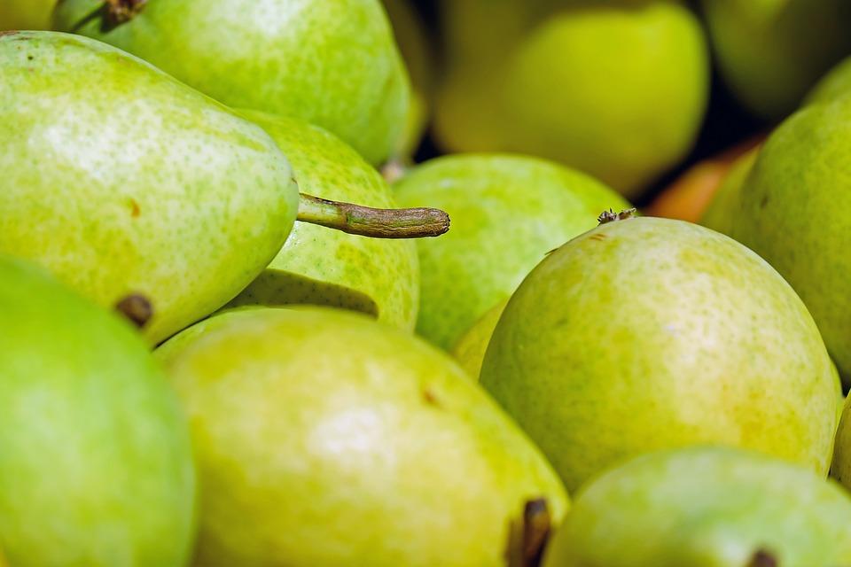 Buah pir Menu Makanan Terbaik Untuk Diet Menurunkan Berat Badan