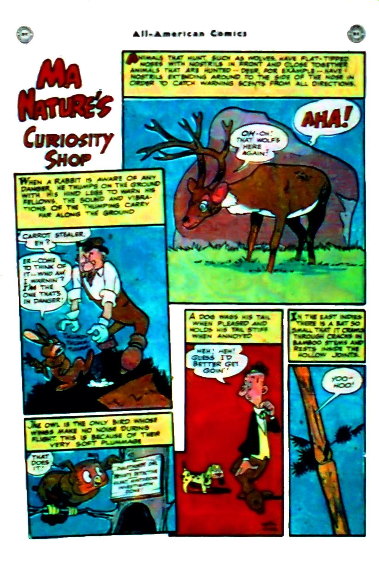 Read online All-American Comics (1939) comic -  Issue #102 - 25