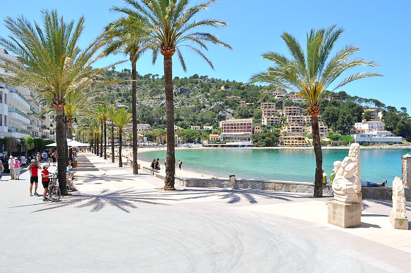 palm trees at Port de Soller mallorca