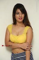 Cute Telugu Actress Shunaya Solanki High Definition Spicy Pos in Yellow Top and Skirt  0058.JPG