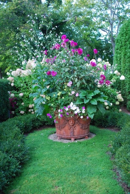 enchanting cottage garden container