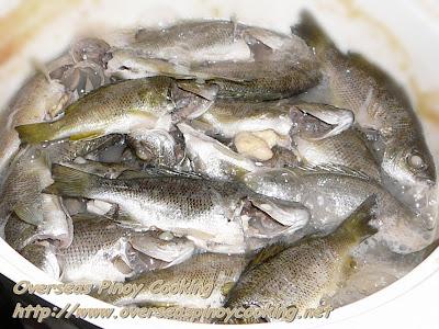 Pinangat na Ayungin sa Sampalok - Cooking Procedure