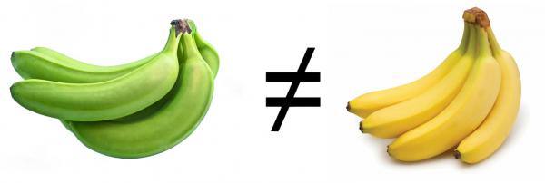 Banane mûre versus banane non mûre (verte)
