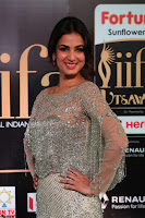 Sonal Chauhan in a stonework Floor Length Silver Designer Gown at IIFA Utsavam Awards March 2017 005.JPG
