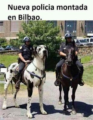 Policía montada, Bilbao