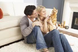 Divorcio con mascotas
