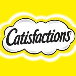 Prueba Castisfactions un snack de pollo