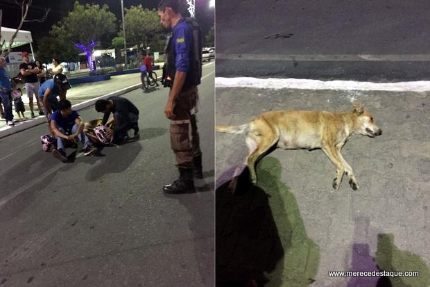Moto bate em cachorro e deixa duas pessoas feridas na Avenida 29 de Dezembro, em Santa Cruz