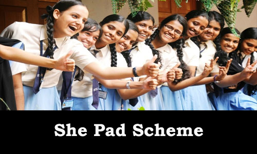She Pad Scheme to Provide Free Sanitary Napkins to Girl Students