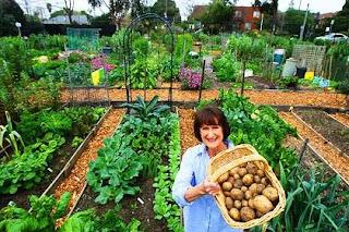 Wonderful Organic Gardening Ideas