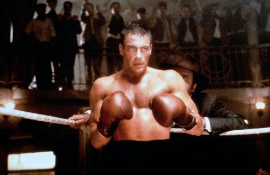 JCVD ~ Trending stories on the WEB