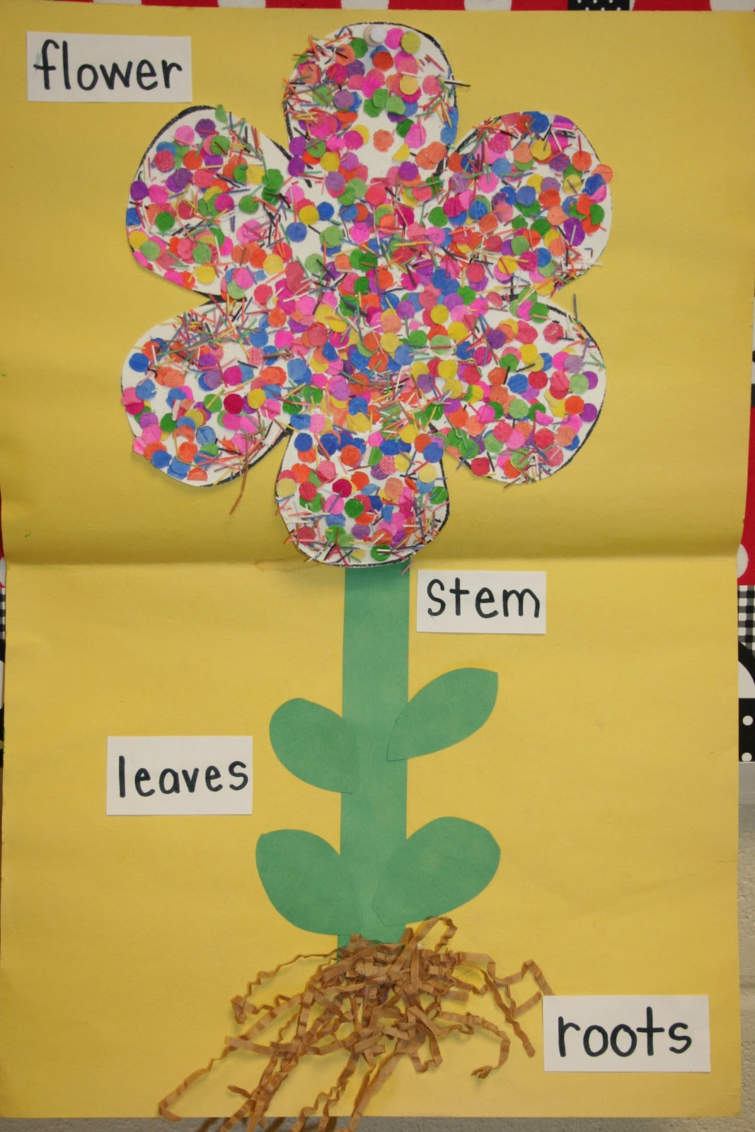 Mrs Lee S Kindergarten Spring And Plants