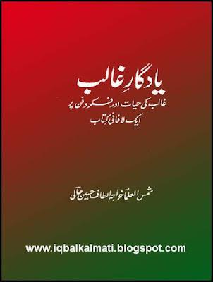 Biography of Ghalib in Urdu